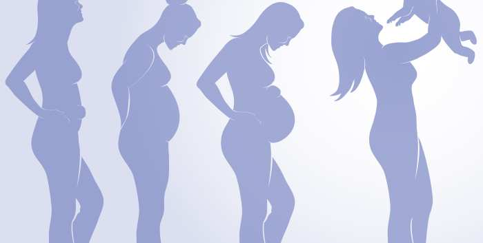 Perinatal Psychiatry Updates for the OBGYN in a Rapidly Evolving Field