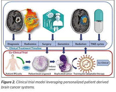 Clinical trial model leveraging personalized patient derived brain cancer systems