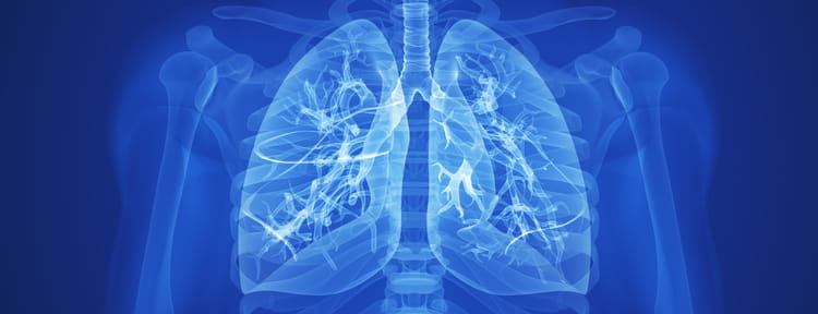 UPMC Physician Resources Image of Healthy Lungs