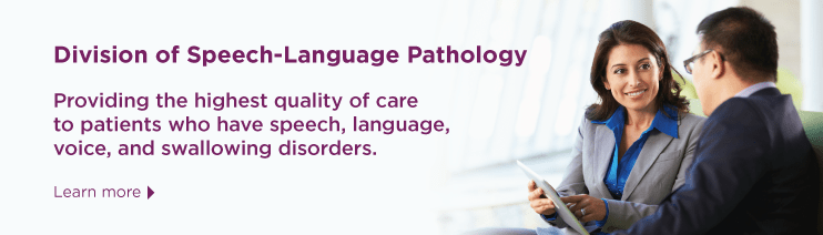 """A banner with a picture of a woman pointing to something on a clipboard, showing it to a man. They both were business suits. There is purple text that says """"Division of Speech-Language Pathology""""."""