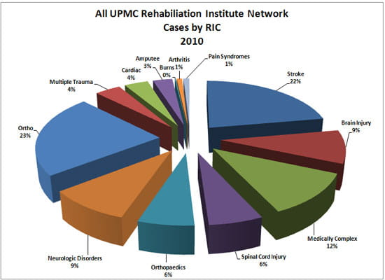 Pie chart showing the Rehabilitation Institute patients by disease or condition.